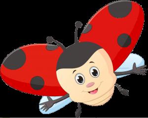 Ladybug Edited